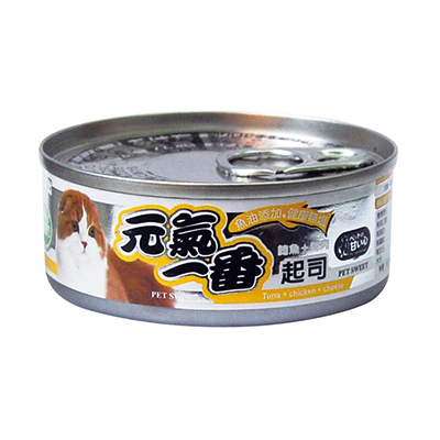 cat cheese, cheese cat, cat food with cheese
